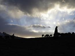 一个高原藏族村的日常